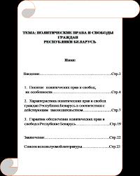 Реферат Политические права и свободы граждан Республики Беларусь План Введение Курсовая работа