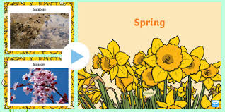 Spring Powerpoint Eyfs Spring Photo Powerpoint Season Weather Discussion