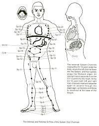 Spleen Meridian