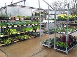 cantrell gardens nursery nurseries gardening 7800 cantrell rd little rock ar phone number last updated november 28 2018 yelp