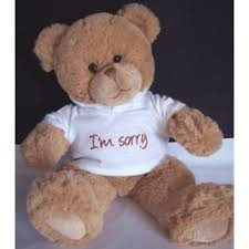 i m sorry teddy bear with hoo