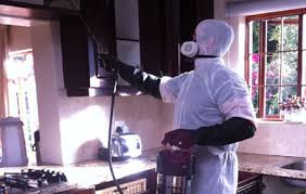 Image result for Eco-Friendly Techniques for indoor pest control
