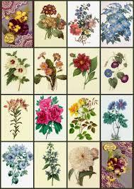 vintage flower sheets artbyjean vintage clip art digital collage sheet flower prints