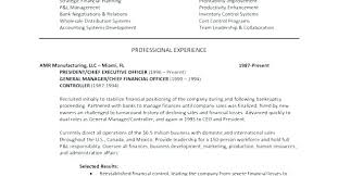 Sample Executive Summary Resume Sample Executive Summary Resume 8 ...