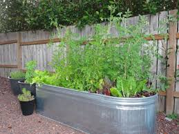 galvanized steel garden beds safe. Perfect Galvanized Long Water Trough Use As Vegetable Garden With Galvanized Steel Garden Beds Safe L