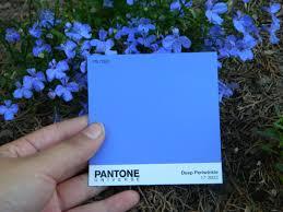 Light Periwinkle Pantone Pantone 7060 Deep Periwinkle This Color Match Blew My Mind