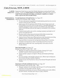 Social Work Resume Template Lovely Senior Sales Executive Resume ...