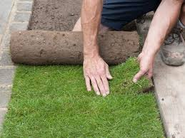 Diy Sod How To Lay Lawn Turf How Tos Diy