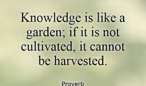 Knowledge Quotes Gorgeous Knowledge Quotes New 48 Quote Of The Day Inspirational W