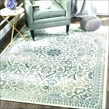 jute rug reviews pottery barn outdoor rugs medium size of west elm premium pad review pebbles