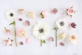 Pink Flowers Aesthetic Desktop ...