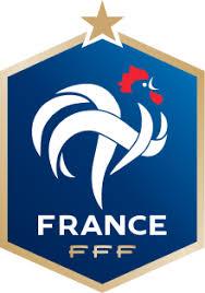 「les bleus francais wiki football」の画像検索結果