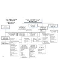 Clinic Organizational Chart Template Hospital Organizational Chart Template Free Download