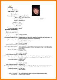 4 Cv In Engleza Model Care Giver Resume