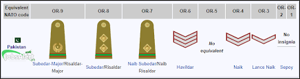 Army Nco Ranks Chart Pakistan Army Ranks And Badges Salary Pay Scale