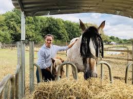 Blind Paard En Geleidepony Dag Na Oproep Al Geadopteerd He