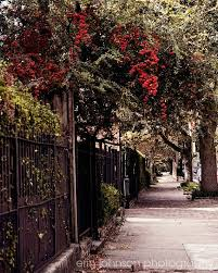 Small Picture 367 best New Orleans images on Pinterest New orleans louisiana