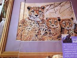 Captivating Wildlife Sampler Big Cat Mother Cheetah With