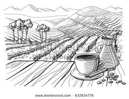 coffee plantation illustration. Wonderful Coffee Coffee Plantation Landscape Table Cup Sack In Graphic Style Handdrawn  Vector Illustration Intended Coffee Plantation Illustration A