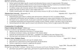 Library Volunteer Cover Letter Auction Coordinator Cover Letter