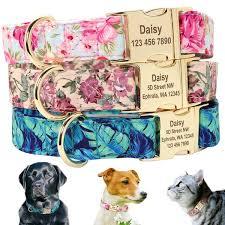 <b>Dog</b> Tag <b>Collar Personalized Pet</b> Puppy Nameplate <b>Collar</b> Custom ...