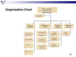 Feasibility Study Process Flow Chart Feasibility Studies