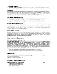 Professional Summary Examples Fascinating Professional Summary Resume Examples For Software Developer On A How