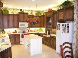 Kitchen Above Cabinet Decor Cozy Decorating Ideas Above Kitchen Cabinets On Kitchen With New