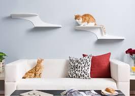 stylish climbing shelves