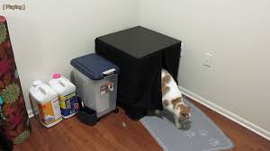 make cat furniture litter box using ikea lack table in 5 minutes for 16 21
