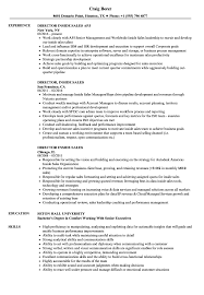 Inside Sales Resume Sample Account Manager Dir Sevte