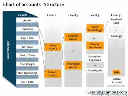 Sap Financial Accounting Fi Chart Of Accounts
