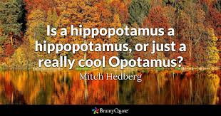 e is a hippopotamus a hippopotamus or just a really cool opotamus mitch hedberg