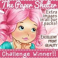 Image result for the paper shelter winners badge