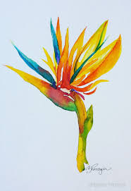 bird of paradise watercolor a few of my creations adellarts com paradise watercolor and bird