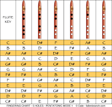 Native American Flute Notes Chart Pentatonic Scale In Mode 1 For 5 Hole Naf In 2019 Flute