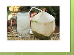 uses of coconut tree  uses of coconut tree