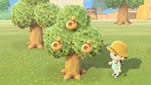 お金 の なる 木 あつ 森