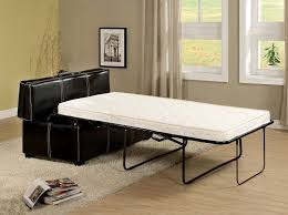 Appoline Contemporary Style Black Leatherette Pull Out Twin Bed Ottoman