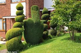'Public order offence': The council has ordered that this bush carved into  the. '