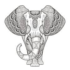 Small Picture Elephant Patterns Animals Coloring Pages For Adults Justcolor A