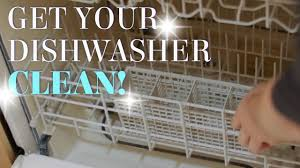 How To Clean A Dishwasher How To Clean Your Dishwasher Easy Hack Youtube