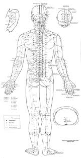 Acupuncture Point Chart Free 100 Online Free E Course With David Avocado Wolfe Mcat