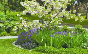 Small Picture Garden Planning and Landscaping Melbourne