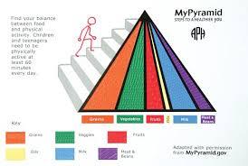 blank food chain pyramid.  Food Food Chain Pyramid Worksheet To Blank Food Chain Pyramid 3