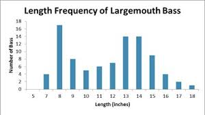 Largemouth Bass Age Chart Ohrback Lake Survey Nys Dept Of Environmental Conservation