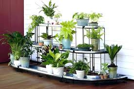 outdoor plant shelf outdoor plant pedestal plant stand pedestal plant stands indoor also with a plant outdoor plant shelf unique outdoor plant stands