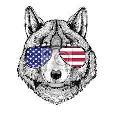 Fototapeta Wolf Dog Ručně Kreslená Ilustrace Pro Tetování Emblém Odznak