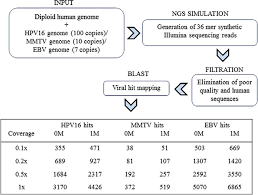 Illumina Sequencing Flow Chart Assessment Of Epstein Barr Virus Nucleic Acids In Gastric