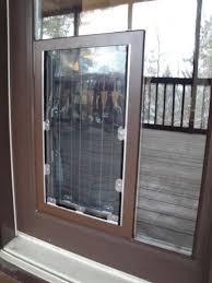 glass pet door